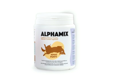 Box of 12 AlphaMix