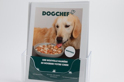 60 flyers Dog Chef dans support A5