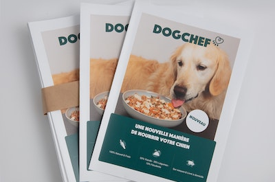 60 flyers Dog Chef SANS support A5