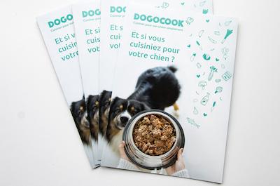 60 flyers Dogocook